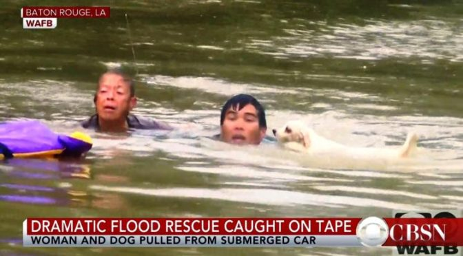 Louisiana Floods Bring Out The Best In People